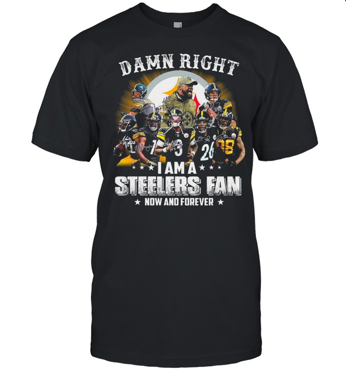 Pittsburgh Steelers Baseball Teams Damn Right I Am A Steelers Signature Fan Now And Forever shirt Classic Men's T-shirt